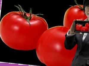 томаты помидоры журналистика