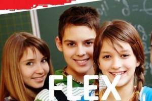 flex программа старшеклассники США журналистика